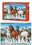 Пазлы на 2000 деталей «Бегущие лошади», C-200702, купить