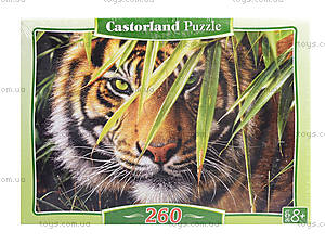 Пазл на 260 деталей «Тигр в джунглях», B-27200, фото