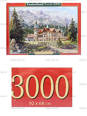 Пазл на 3000 деталей «Картина - Замок в горах», C-300099