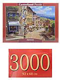 Пазлы Castorland 3000 «Солнечный день в Ницце», С-300471, отзывы