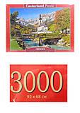 Кастор пазлы 3000 «Рамзау, Германия», C-300464