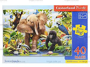 Пазл Castorland maxi на 40 деталей «Юные джунгли», 124, отзывы
