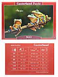 Пазл Castorland на 500 деталей «Лягушки», В-52301