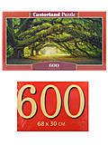 Пазлы Castorland 600 «Лесная тропа», B-060030