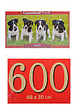 Кастор пазлы 600 «Щенки Джек Рассел», B-060337, купить