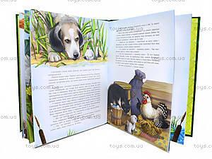 Детский сборник сказок, С242004У, купить