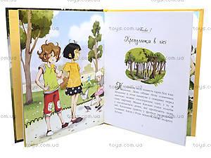 Книга «Меховые помпоны и К: Собака ищет хозяина!», Р384008У, купить