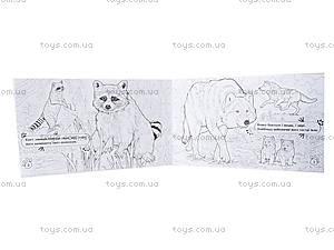 Книжка-раскраска «Животные. В лесу», А583008У, купить