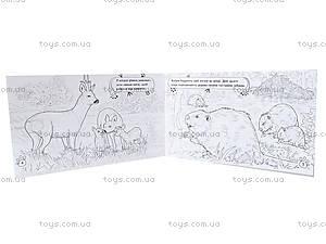 Книжка-раскраска «Животные. В лесу», А583008У, фото