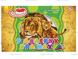 Книжка-раскраска «Животные: В далеких странах», А583005У, цена