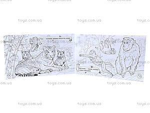 Книжка-раскраска «Животные: В дальних странах», А583001Р, фото