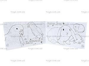 Детская раскраска «Животные. В доме», А583002Р, фото