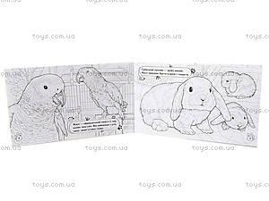 Книжка-раскраска «Животные. В доме», А583006У, фото