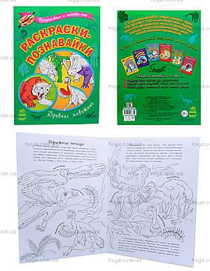 Детские раскраски «Древние животные», К164003Р