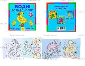 Водные раскраски «Птицы», Р489003У
