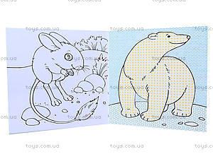 Водные раскраски «Животные», Р489005У, купить