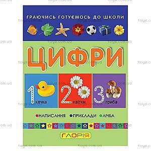 Книга для малышей «Маленький вундеркинд. Цифры», 2174