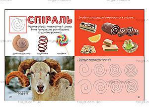 Книжка для детей «Маленький вундеркинд. Формы», 2211, игрушки
