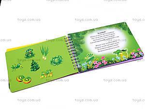 Книжка с магнитами «Цвета», 75047, отзывы