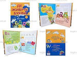 Детская книга-игра «Где живут буквы?», украинская, 9076