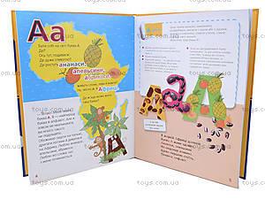 Детская книга-игра «Где живут буквы?», украинская, 9076, цена
