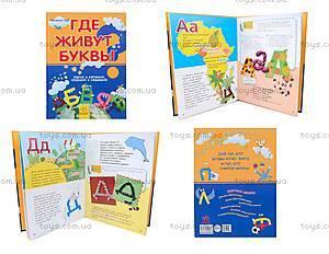 Детская книга-игра «Где живут буквы?», русская, 9069