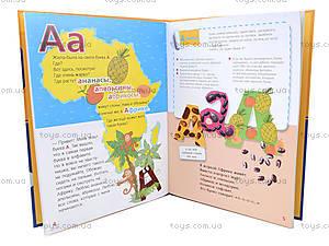 Детская книга-игра «Где живут буквы?», русская, 9069, цена
