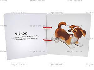 Книжка на шнурочке «Домашние животные», Талант, фото