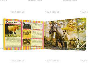 Книжка с пазлами «Лошади», Талант, отзывы
