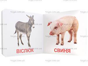 Книжки для самых маленьких «Домашние животные», КН202, купить