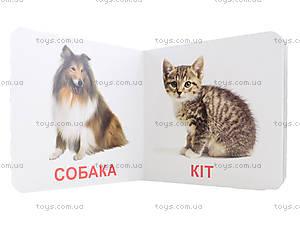 Книжки для самых маленьких «Домашние животные», КН202, отзывы