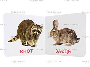Книжки для самых маленьких «Дикие животные», КН201, цена