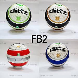 Кожаный футбольный мяч, FB2