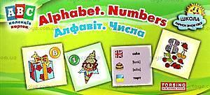 Коллекция карточек ABC Alphabet: алфавит, числа, 02077