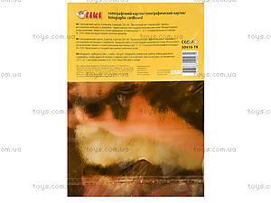 Цветной голографический картон A4, 50916TK, фото
