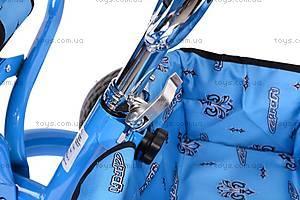 Колясочный трехколесный велосипед Profi Trike, M0449-1, Украина