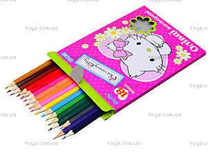 Комплект цветных карандашей, 18 штук, 290243, купить