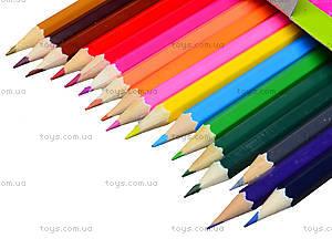 Комплект цветных карандашей, 18 штук, 290243, фото