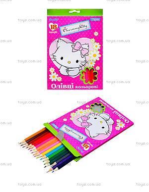 Комплект цветных карандашей, 18 штук, 290243