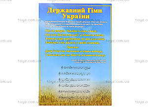 Комплект плакатов «Моя Украина - независимое государство», 13104039У, магазин игрушек