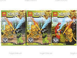 Конструктор с двумя фигурками Ninjago, 8 видов, 79269, цена