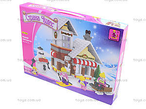 Детский конструктор «Дом моей мечты», 24808, купить
