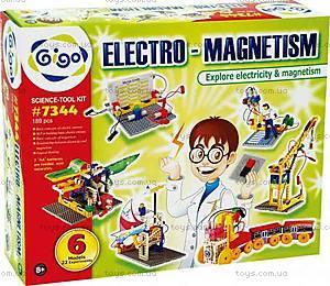 Конструктор Gigo «Электромагнетизм», 7344