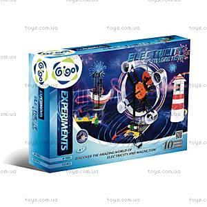 Конструктор Gigo «Электричество и магнетизм», 7065