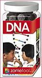 Конструктор научный DNA, 00523