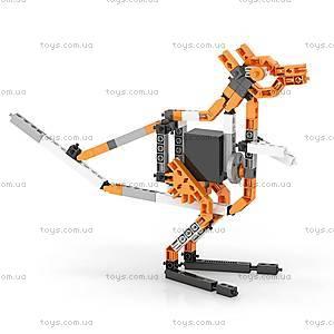 Конструктор с электродвигателем серии Inventor Motorized 50 в 1, 5030, игрушки