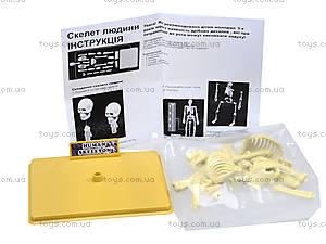 Конструктор «Скелет человека», 28206-EC, отзывы