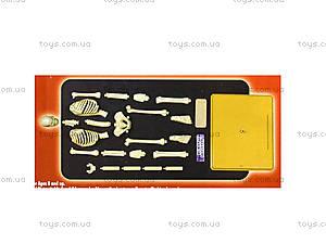 Конструктор «Скелет человека», 28206-EC, игрушки