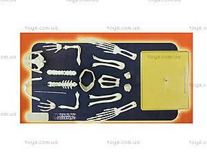 Конструктор «Скелет лягушки», 28201-EC, отзывы
