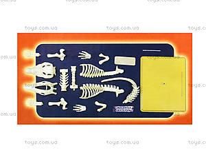 Конструктор «Скелет крокодила», 28202-EC, купить